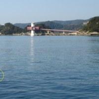 のんびりと釣り~竜串海岸