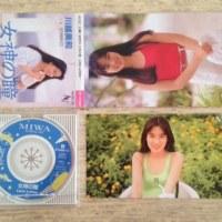 「女神の瞳〜Little Lullaby〜」 川越美和 1989年