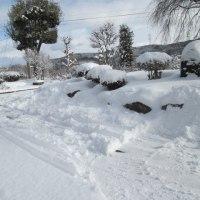 今日も雪かき