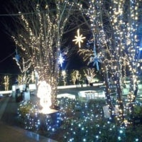 スカイツリーからの夜景♪