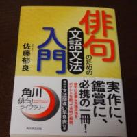 「俳句のための文語文法入門」佐藤郁良 &カラス