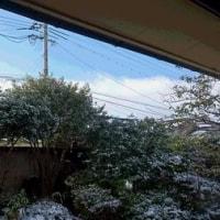 雪がやんで。