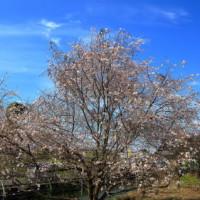 小さな町の春と秋