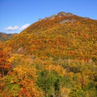 「ハ剣山」の黄葉は 素晴らしいね !