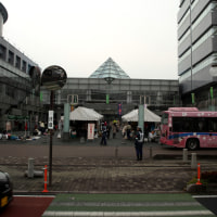 廿日の市(広島)