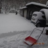 綺麗な大雪