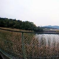昨日の散歩から/スマホに魚眼レンズをつけて写してみました。