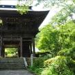 景徳院のヤマユリとアジサイ~甲州市① (回想)