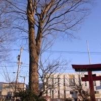 二日は、浅間神社