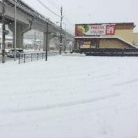 最強寒波~帰宅日記
