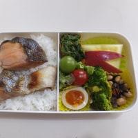 鮭弁と煮玉子の お弁当