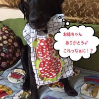 バレンタインにダブルバースデー!!(番外編)