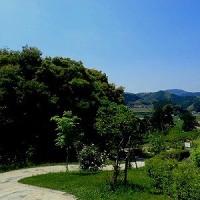 島田市ばらの丘公園♪