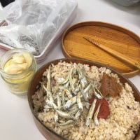 今日の弁当〜毎日の昼食〜