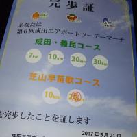 第6回成田エアポートツーデーマーチ 2日目 芝山早苗歌コース20kmに参加