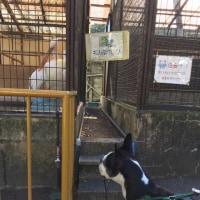 岡山 池田動物園