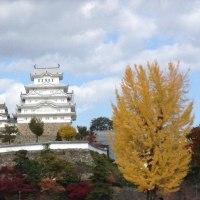 紅葉の姫路城