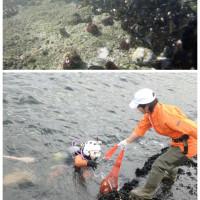 第36回山下公園海底清掃大作戦