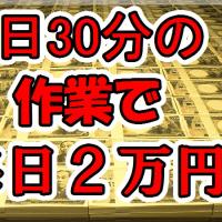 1日30分の作業で毎日2万円!!☆おまけ50万円相当☆一律¥1980☆