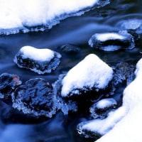 霧氷の下を歩く