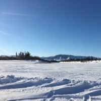 極北の茶店道