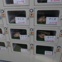 上賀茂のすぐき漬け自動販売機
