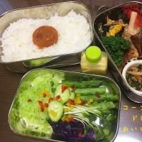 5.26 コーンドレッシングで食べる温野菜入りお弁当