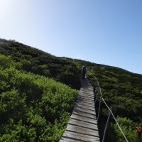 大山登山 6月4日