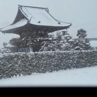 大雪のため休み