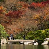 三景園の秋