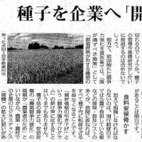 森友学園問題は種子法廃止のオトリだ!【最悪のモンサント法=遺伝子組換え=がんになる作物】