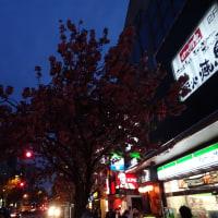 桜新町駅前で(2)
