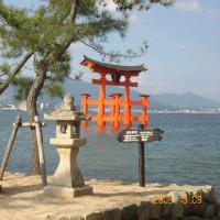 宮島に行きました。