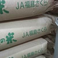 JA福島さくら入荷