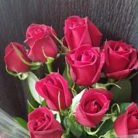 2月26日 明日の誕生花・ゆかりの花 花言葉は?(*^O^*)☆