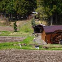 日光市 大室 水車小屋のある風景 29.4.24