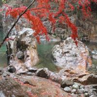 虎岩の紅葉