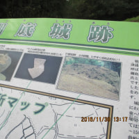 久しぶりの フットパス~棚底城址と石垣群を訪ねて (11.30)