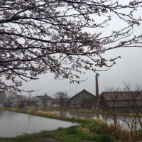 志和堀の春