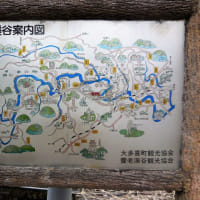 養老渓谷、中瀬遊歩道の 『弘文洞跡』 までハイキングに行きました。