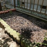 花壇菜園が少し広くなりました