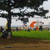 よさこいmyフェスタ in 葛西臨海公園