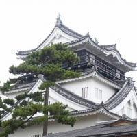 城めぐり@日本どまんなかお城スタンプラリー 6