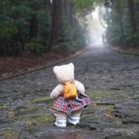 山科区、御陵にある「天智天皇御陵」。うっそうとした森に抱かれた、静寂の御陵