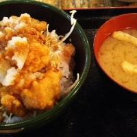まんぷく食堂 ビール と 麻婆炒飯 と 竜田おろし丼