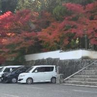 秋色を訪ねて―宝福寺
