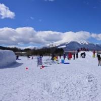 山中湖の白鳥と雪遊び広場の子供たち