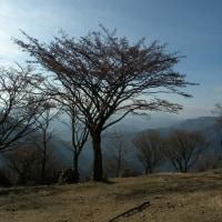 101212_鍋割山(2010年登山)