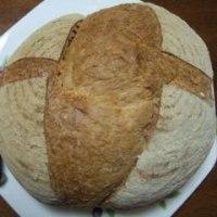 森のパン屋 せふりの