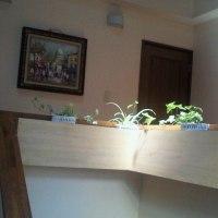 観葉植物!
